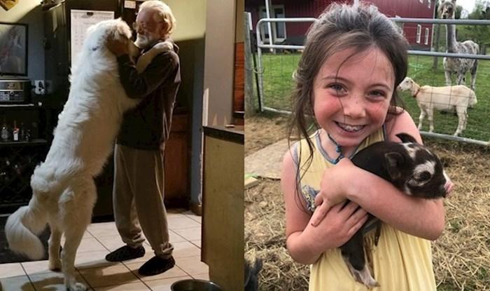 Fotke koje dokazuju da prava ljubav dolazi u svim oblicima i veličinama