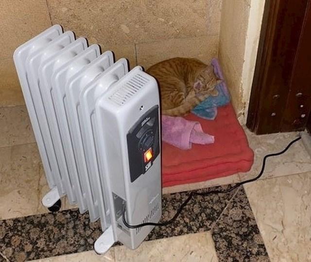 Djevojčica je ostavila grijač vani kako se mačka lutalica ne bi smrznula