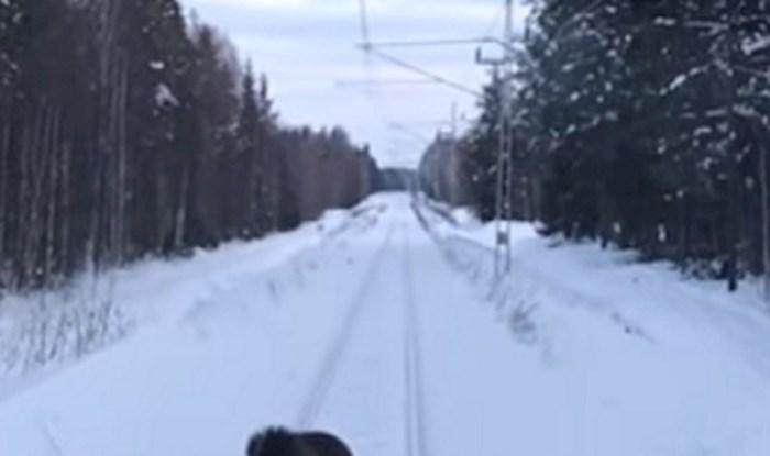 VIDEO Vlak je mirno vozio, odjednom mu se nešto našlo na putu