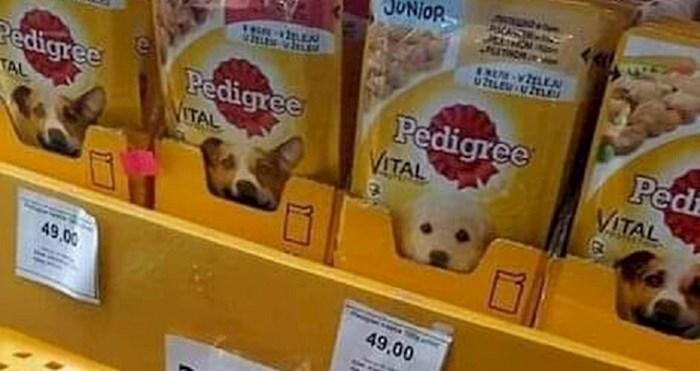 Pogledajte kako su u jednom dućanu u Srbiji nazvali poznatu hranu za pse