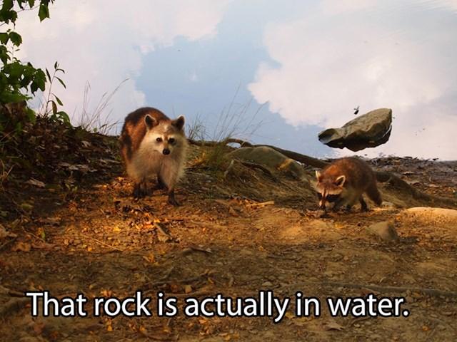 Kamen je zapravo u vodi