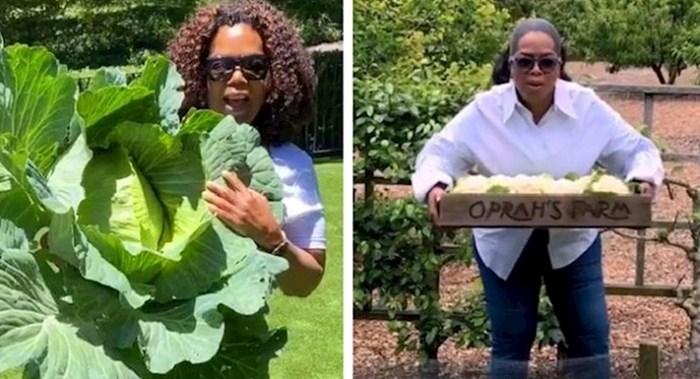 Slavne osobe koje su odlučile same uzgajati voće i povrće