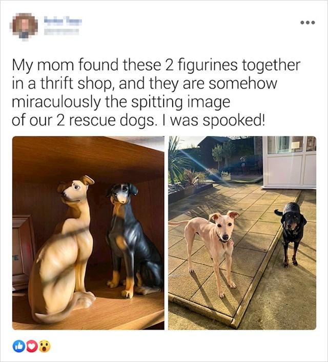"""""""Mama je pronašla ove dvije figurice koje izgledaju jednako kao psi koje smo udomili..."""""""