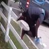 Ovaj dostavljač je pobjegao glavom bez obzira kada je ugledao ogromnog psa koji se samo htio igrati