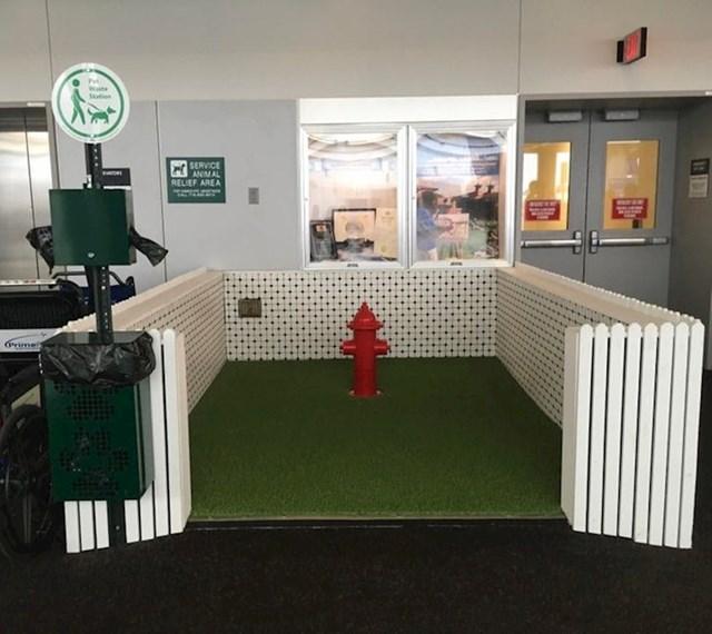 Zahod za pse u jednoj zračnoj luci