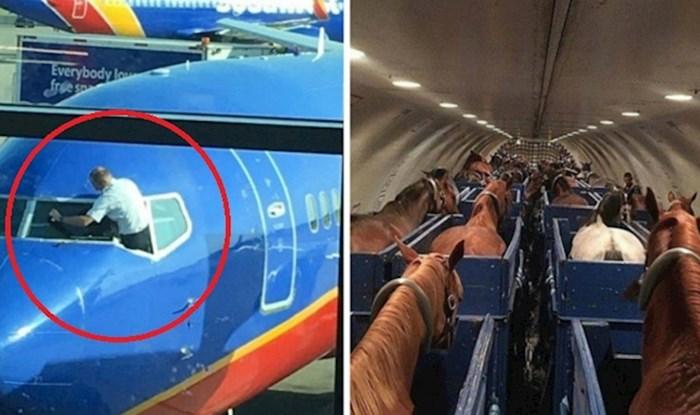 Ljudi su slikali prečudne prizore na aerodromima i u avionima koje su morali podijeliti s drugima