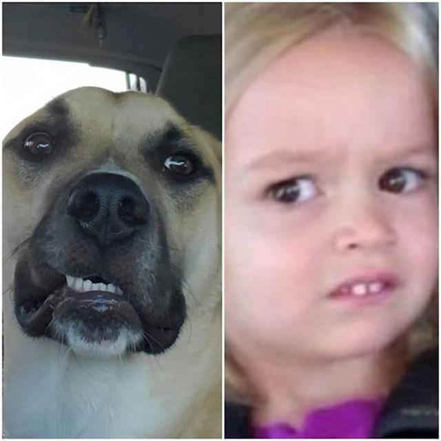 Našla se tu i djevojčica Chloe iz još uvijek popularnog meme-a :D