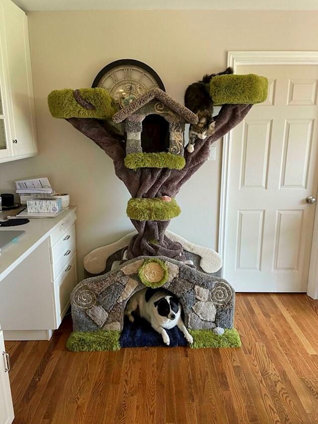 Kućica za mačke (i pse)