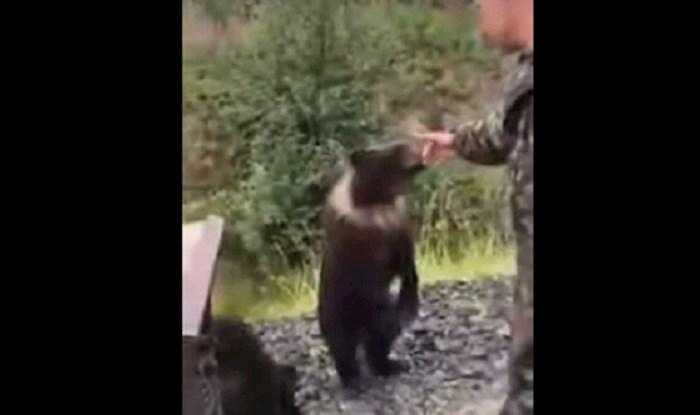 VIDEO Rus je pokušao pomaziti medvjeda, ali medvjedu se to nije svidjelo