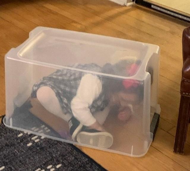 """""""Mjesto za skrivanje moje nećakinje"""""""