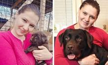 Psi koji su odrasli u prave divove, ali još uvijek misle da su bebe