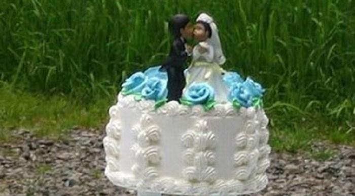 """Ova svadba na otvorenom tekla je u najboljem redu, dok nije došao jedan nepozvani gost i """"napao"""" tortu"""
