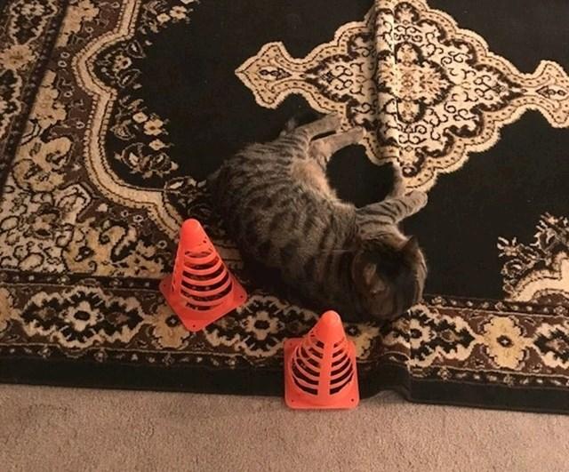 """""""Mama se bojala da netko ne stane na mačku..."""""""