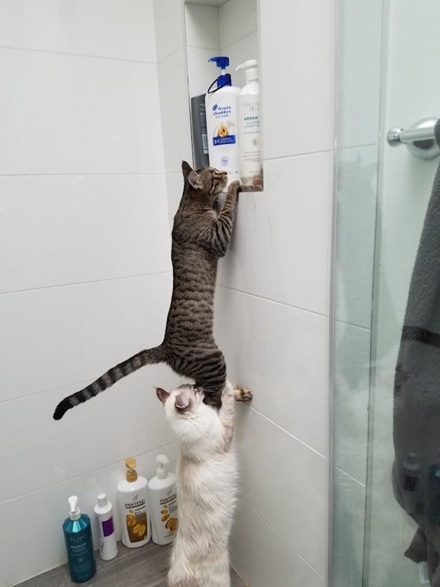 """Drži me i pazi da nitko ne naiđe!"""