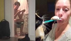 Mačke koje ne mare za osobni prostor svojih vlasnika