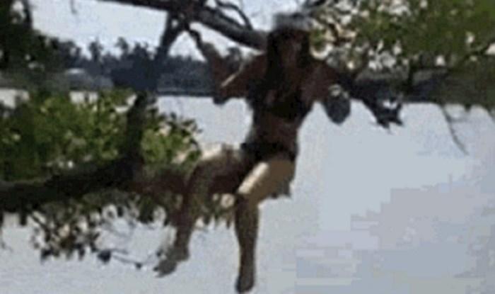 Djevojka je pozirala na stablu no ono što se dogodilo pri silasku nikako nije očekivala