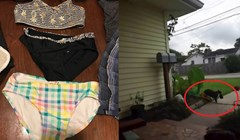 Žena je pronalazila tuđu odjeću po kući, snimke kamere otkrile su da je njena mačka kleptoman