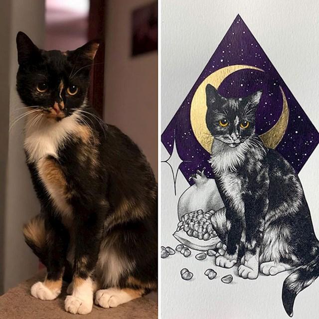 """""""Umjetnica je nacrtala moju mačku"""""""