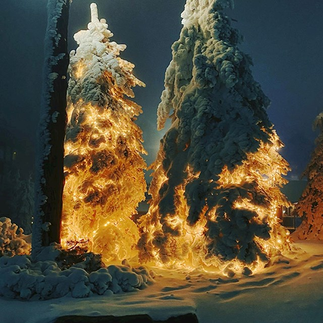 Rakete ili samo borovi s božićnim dekoracijama prekriveni snijegom?