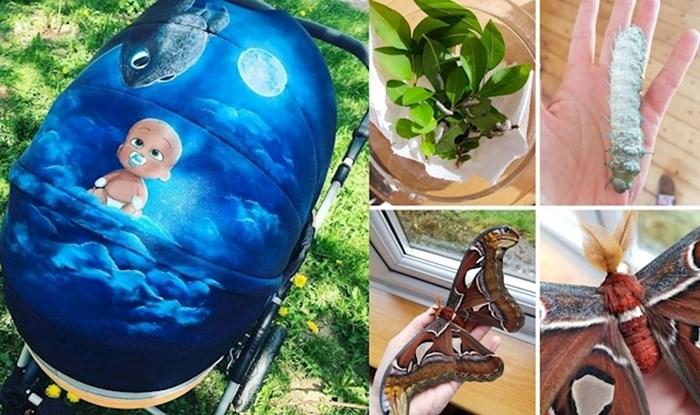Ljudi na internetu objavljuju svoje neobične hobije