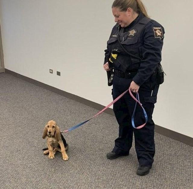 Ovo je Hope, novi pas koji će pomagati jednoj policijskoj postaji