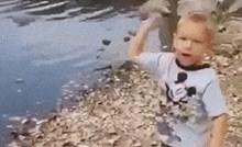 Dječak je pokušao baciti kamen u vodu, to je završilo jako loše