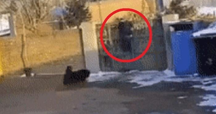 Tip se jedva popeo na vrata i pobjegao od bijesnog psa, no onda mu se dogodilo nešto najgore