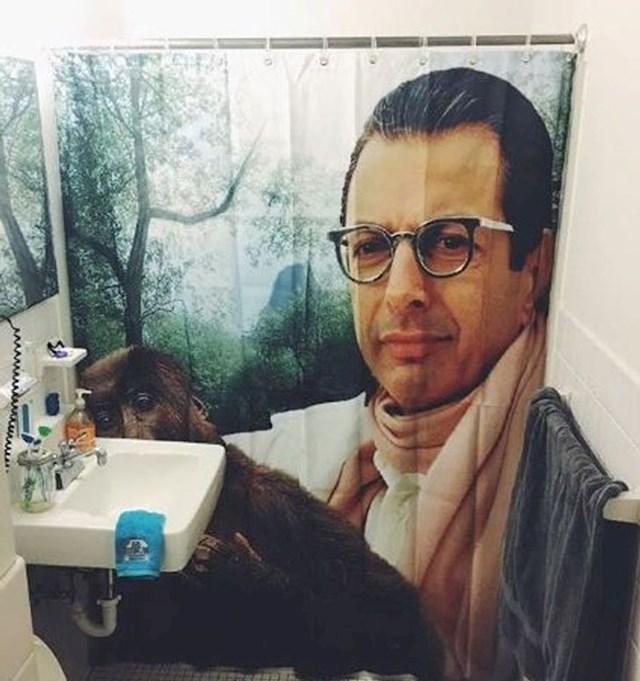 Novi zastor u kupaonici...