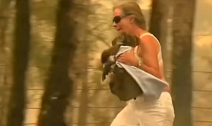 VIDEO Malena koala skoro je izgubila život u požaru, ali ova hrabra žena spasila ju je u zadnji čas