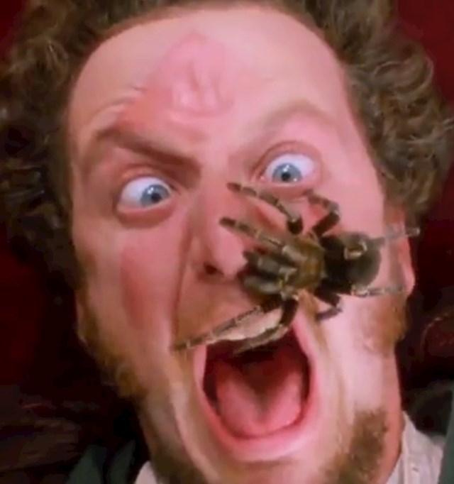 Nikad nismo saznali kako je prošao pauk iz filma...