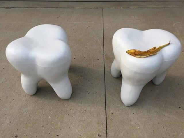 Zub, jer zašto ne?