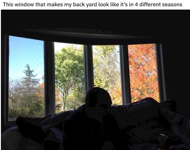 """""""Moj prozor učinio je da moje dvorište izgleda kao da je riječ o četiri godišnja doba"""""""