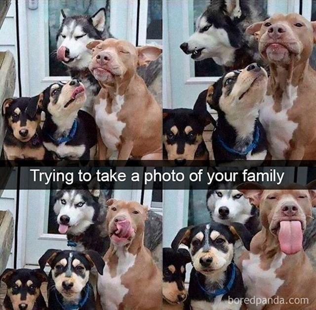 Kada pokušaš uhvatiti obiteljsku fotku:
