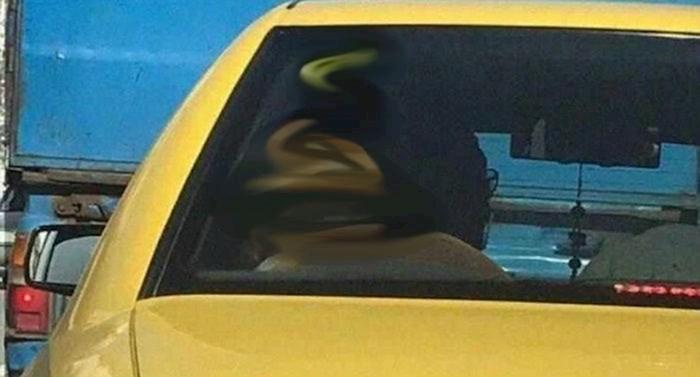 Zbog Sunca i naljepnice glava ovog čovjeka izgleda kao biljarska kugla