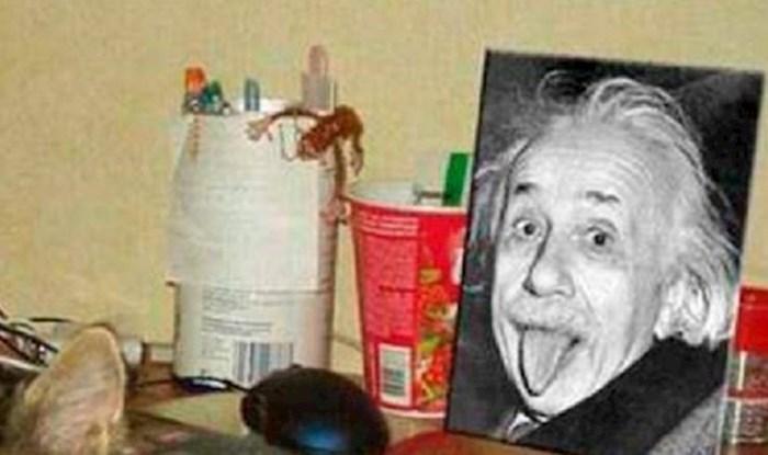 Vlasnik ove mačke skoro je umro od smijeha, kakva nevjerojatna slučajnost