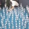 Liku je uspio nemogući trik na biljarskom stolu, pogledajte što je učinio