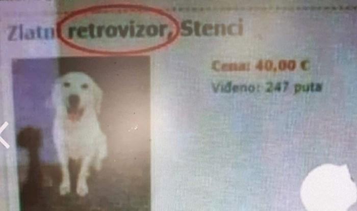 Bio je uvjeren da mu se pas tako zove