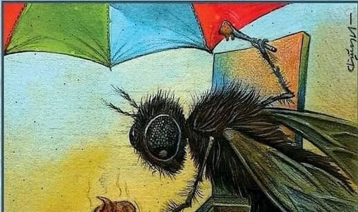 Ljetne radosti u svijetu muha