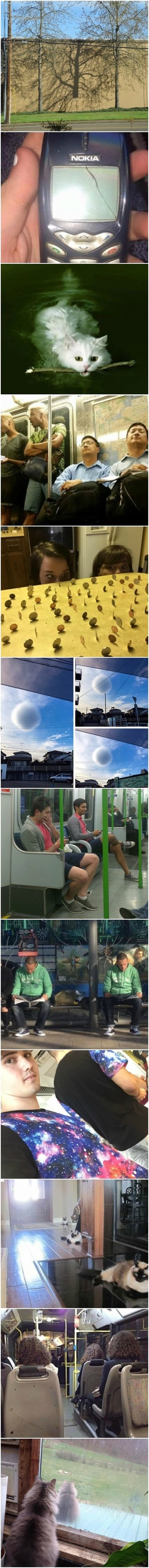 Ove čudne fotografije snimljene su u paralelnom svemiru