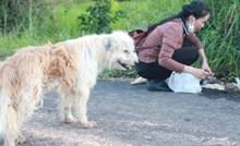 Vjerni pas na istom mjestu četiri je godine čekao svoje vlasnike. Konačno se ujedinili