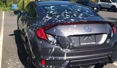 Baš je bio u autopraoni, divio se kako izgleda kao nov, parkirao ga, a onda je naletjelo jato ptica...