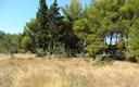 .::: Građevinsko zemljište u Jadrtovcu :::.