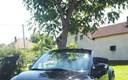 VW Beetle Cabrio 140 tisuca km auto kao nov bez lipe ilaganja reg 1 godinu moguca zamjena cijena 4800e